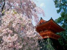 вокруг света - япония - храм