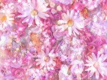 настроение - любовь - цветы